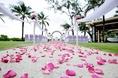 ร้านดอกไม้เปิดใหม่ในภูเก็ต,FLOWER FLORIST DELIVERY SERVICE,PHUKET FLOWERS,FLORIST PHUKET