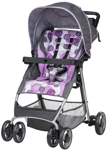 Evenflo FlexLite Travel System, Lizette รูปที่ 1