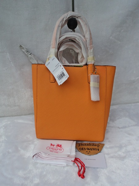 COACH 29001 MADISON SAFFIANO LEATHER MINI NORTH/SOUTH TOTE รูปที่ 1