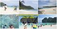 ทัวร์ภูเก็ต จองที่นี่ที่เดียวราคาถูก แพ็คเกจทัวร์ภูเก็ต ดำน้ำดูปะการัง  เช่ารถตู้ เช่าเรือเหมาลำ