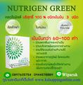 คลอโรฟิลล์ Nutrigen Green ช่วยล้างสารพิษในร่างกาย ช่วยให้เลือดสะอาด