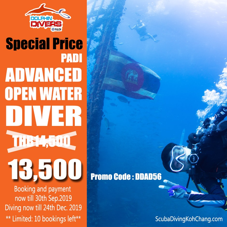 รูปภาพ Thailand Scuba Diving: Open Water Diver Course – Special Promotion!!