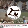 ปั๊มเคมี 023223188 ปั๊มคลอรีน ปั๊มน้ำยา เครื่องจ่ายน้ำยา เครื่องจ่ายสารละลาย Farm ฟาร์มปศุสัตว์