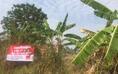 ขายที่ดิน 2 งาน 17 ตร.วา ในเทศบาล อ.หนองบัวแดง จ.ชัยภูมิ