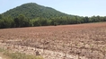 ขายที่ดินเป็นโฉนด อยู่ติดภูเขา 2 ด้าน อ.สวรรคโลก จ.สุโขทัย