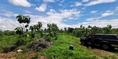 ขาย ที่ดิน จอมบึง ราชบุรีเขตจอมบึง ราชบุรี 25 ไร่ 2 งาน 400000 ตร.วา มีต้นสัก ,มะค่า,ยางนา,ไม้แดง ,พยูง รวมๆกัน  โตพร้อมใช้งานบางส่วน