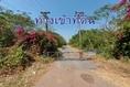 ขาย ที่ดิน ที่ดินสวนมะขาม ที่ดินชัยบาดาล จ.ลพบุรี 2 ไร่ พร้อมปลูกบ้านได้ทันที