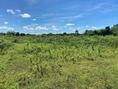 ขาย ที่ดิน ด่วน...ต.น้ำพุ อ.เมืองราชบุรี 8 ไร่ 2 งาน 96 ตร.วา ใกล้เขื่อนห้วยไม้เต็ง