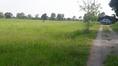 ขายที่ดิน 40 ไร่ ทำเลที่สวย ตำบลไร่รถ อำเภอดอนเจดีย์ จังหวัดสุพรรณบุรี