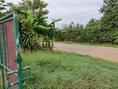ขายบ้านสวนพร้อมที่ดิน บรรยากาศดี ตำบลแม่ข้าวต้ม อำเภอเมือง จังหวัดเชียงราย